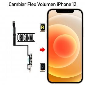 Cambiar Botón Volumen iPhone 12