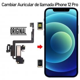 Cambiar Auricular de llamada iPhone 12 Pro