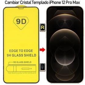 Protector De Pantalla iPhone 12 Pro Max