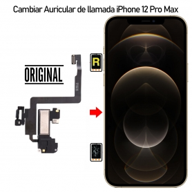 Cambiar Auricular de llamada iPhone 12 Pro Max