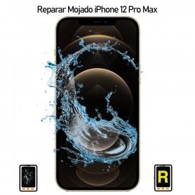 Reparar iPhone 12 Pro Max Mojado