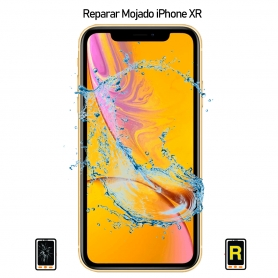Reparar iPhone XR Mojado