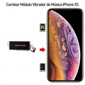 Cambiar Modulo Vibrador iPhone Xs